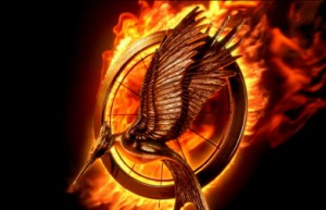 catching-fire-review-preview-big